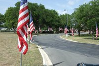 Image: American Flags — American flags line the drive to the Veteran's Hospital in Kerrville, Texas.  A sight to behold.