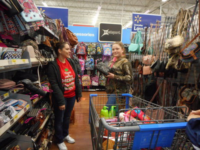 Image: Serious shopping going on in WalMart.